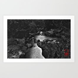 Monochrome River Art Print
