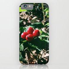Spider Fruit Slim Case iPhone 6s
