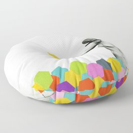Strange Phenomenon Floor Pillow
