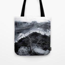 Emory's View Tote Bag
