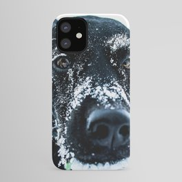 Snow Dog // Cross Country Skiing Black and White Animal Photography Winter Puppy Ice Fur iPhone Case