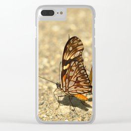 butterfly (Dione juno and Dryas julia) Clear iPhone Case