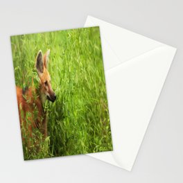 Peeking Out Stationery Cards