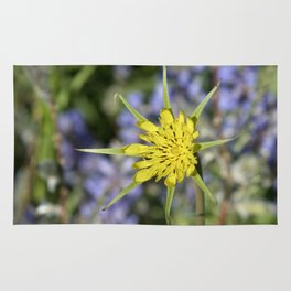 Yellow salsify wildflower against lupine Rug