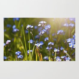 Forget me not flowers in sunlight Rug