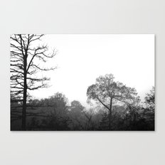 the hollow Canvas Print