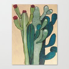 Mexican Cactus Canvas Print