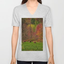 Lonely Bails of Color Unisex V-Neck