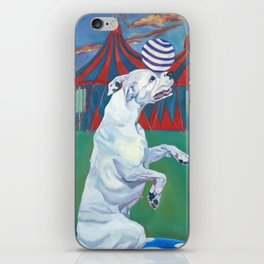White Boxer Dog and a Balancing Ball iPhone Skin