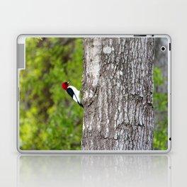 Red Head Bird Laptop & iPad Skin