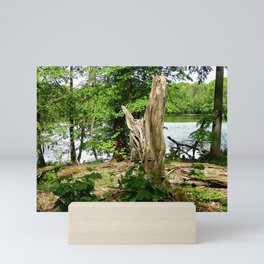 Dead tree with forest and lake photo Mini Art Print