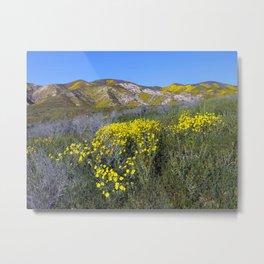 Carrizo Plain National Monument California Metal Print