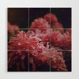 Pink Bellingrath Floral Wood Wall Art