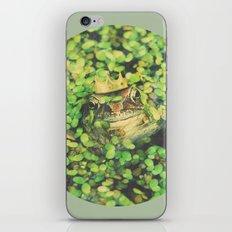Kiss a Toad iPhone & iPod Skin