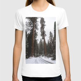 Entering the Giant Forest T-shirt