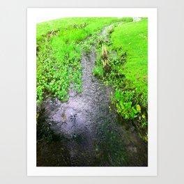 The Little Creek Art Print