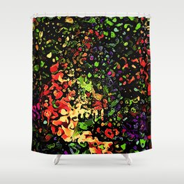 12-hj Shower Curtain