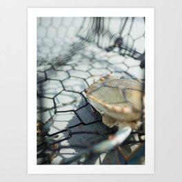 Crab Trap Art Print