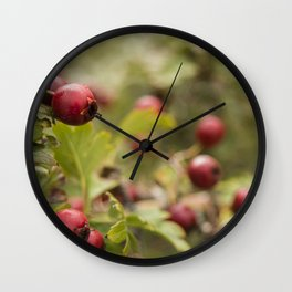 Red on green #3 Wall Clock