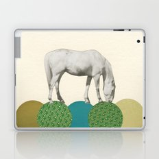 Graze Laptop & iPad Skin