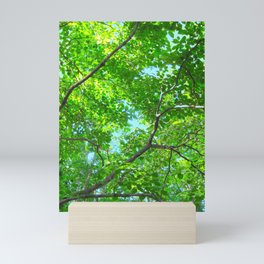 Canopy of Green, Leafy Branches with Blue Sky Mini Art Print