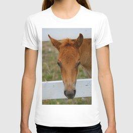 Howdy II T-shirt