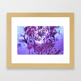 Violet Humming XV Framed Art Print