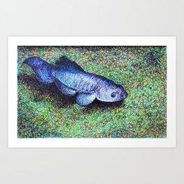 This Thing is the Devil's Hole Pupfish Art Print