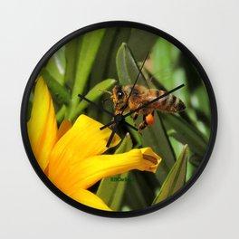 Pollen Express 221 Wall Clock