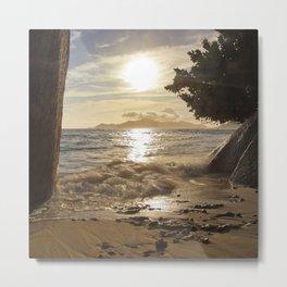 beach of nature Metal Print