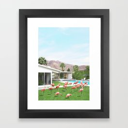 Flamingos in Palm Springs Framed Art Print