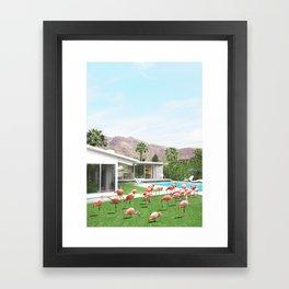 Flamingos in Palm Springs Framed Art Print