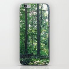 into the woods 12 iPhone & iPod Skin