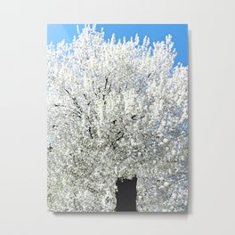 Trees Snow White Metal Print