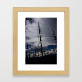 Burned Tree Against Sky Framed Art Print