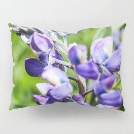 Purple Lupine Photography Print Pillow Sham