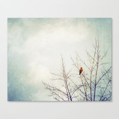 Bird in Tree Photography, Robin Birds Sky Photo, Tree Branches Canvas Print