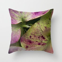 hydranjea pink and green Throw Pillow