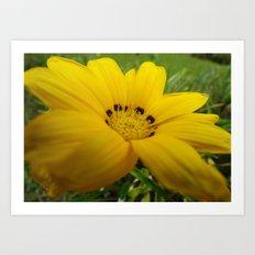 yellow feeling Art Print