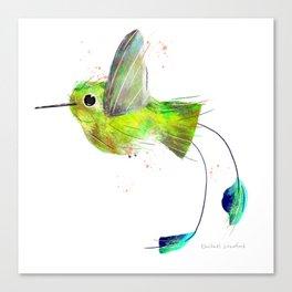Flying Booted Racket Tailed Hummingbird Bird Illustration  Canvas Print