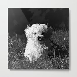 maltese dog vector art black white Metal Print