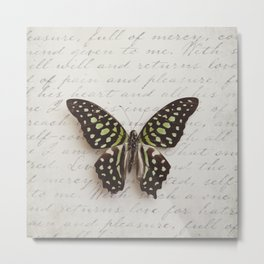 Graphium agamemnon butterfly Metal Print