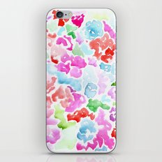 Rainbow Candy iPhone & iPod Skin