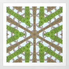 Bark Leaves Stone Kaleidoscope Art 1 Art Print