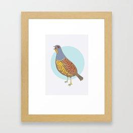 Swinhoe's Pheasant Framed Art Print
