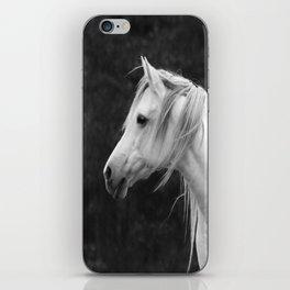 Arabian horse in black and white iPhone Skin