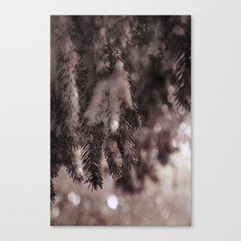 Stille Nacht ~ Silent Night Canvas Print