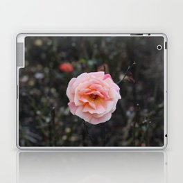 Blooming Blush Rose Laptop & iPad Skin