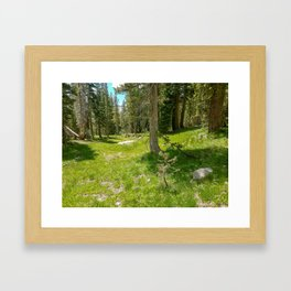 Desolation Wilderness Framed Art Print