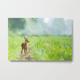 Little Doe (Color) Metal Print